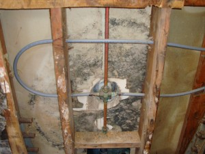 Mold Remediation, Mold removal, Mold Abatement, Toxic mold removal
